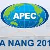 Khai mạc Tuần lễ Cấp cao APEC 2017 tại Đà Nẵng