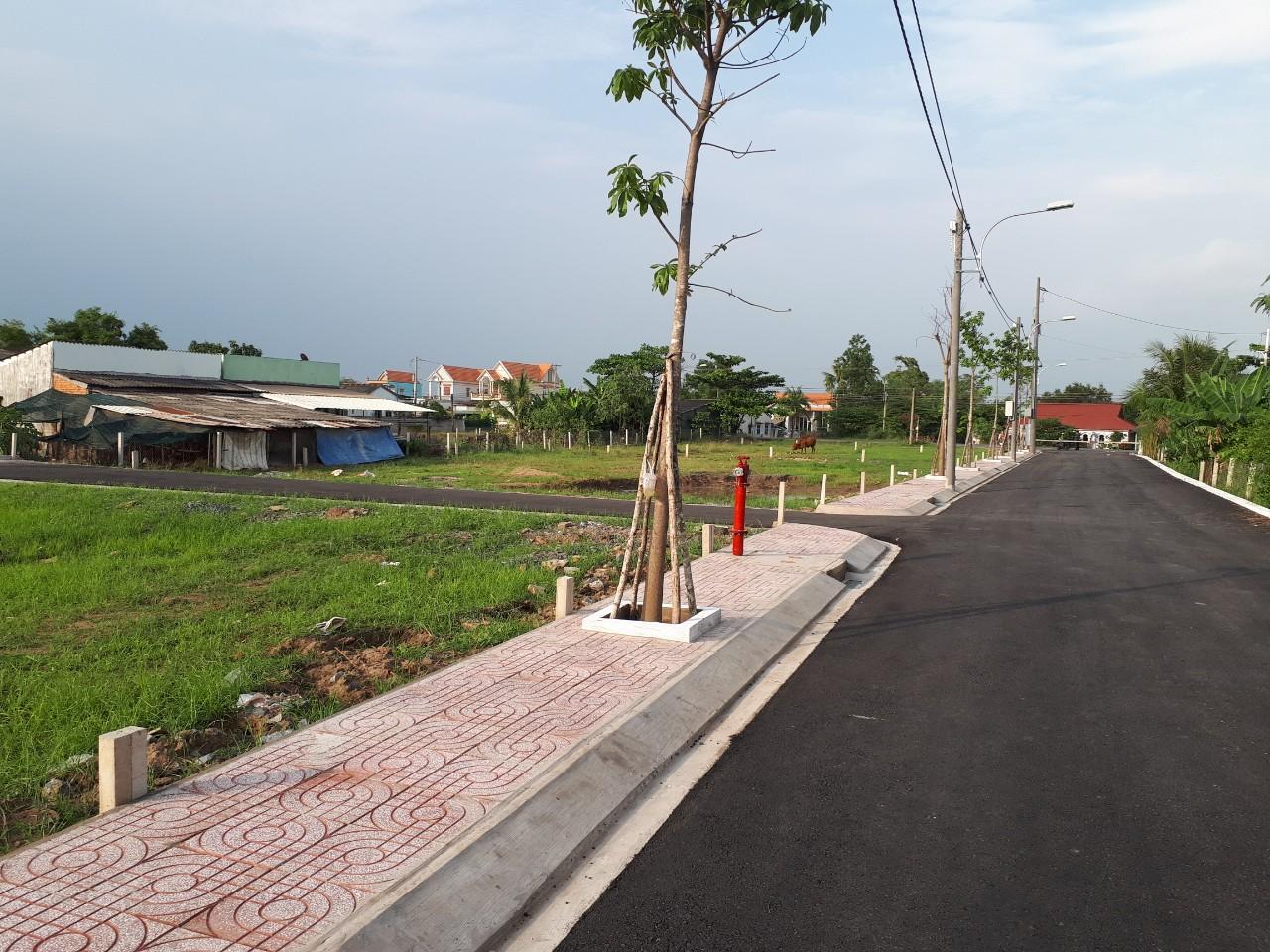 tinh-lo-830-giup-dat-nen-long-an-huong-loi-gi
