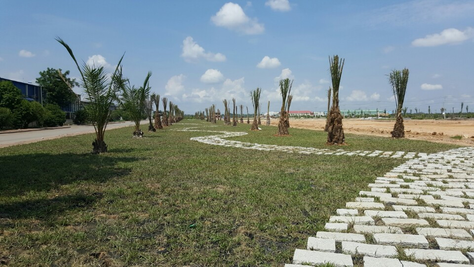 Dự án Vista Land gần cầu vượt Củ Chi 2